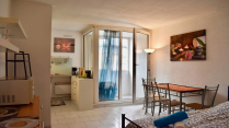 Apartment-in-Montpellier-Languedoc-Roussillon-France---Home132605-Image11