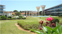 Apartment-in-Vilamoura-Central-Algarve-Portugal---Home796-Beautiful-apartment-Garden